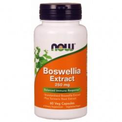 Boswellia Extract 60...
