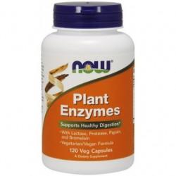 Plant Enzymes 120 Kapsułek...