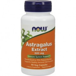 Astragalus Extract 500mg 90...