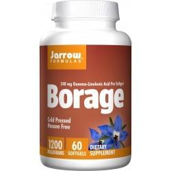 Borage GLA-240 60 Kapsułek...